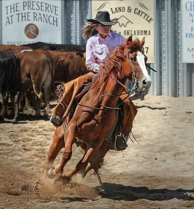 westernreiten lernen